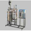 KRH-APJ 100L机械搅拌不锈钢发酵罐