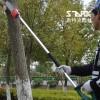 斯特克 15款多功能电动高枝绿篱剪高枝锯子