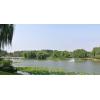 绿景行科技 北京温榆河老河湾段水处理设计服务