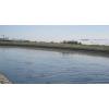 绿景行科技 凉水河亦庄滨河公园段工程设计服务