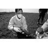 土壤底质检测服务