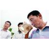 生活污水排放检测服务