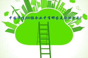中国市值500强企业中有哪些是环保巨头?