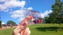 受飞蛾启发 石墨烯太阳能面板获突破进展